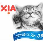 Корм с любовью для кошек всех возрастов!